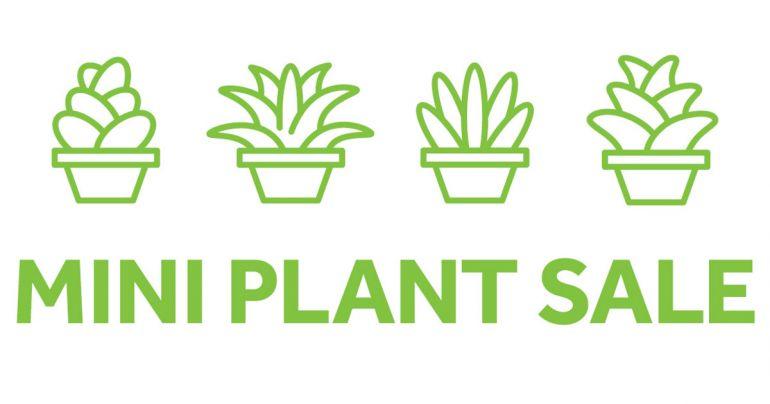 Mini-plant-sale